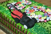 Lawnmower Cake - 8