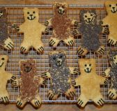 Teddy Bear Biscuits - Biscuits cut in teddy bear shapes and decorated with sprinkles to represent black, grizzly and polar and teddy bears